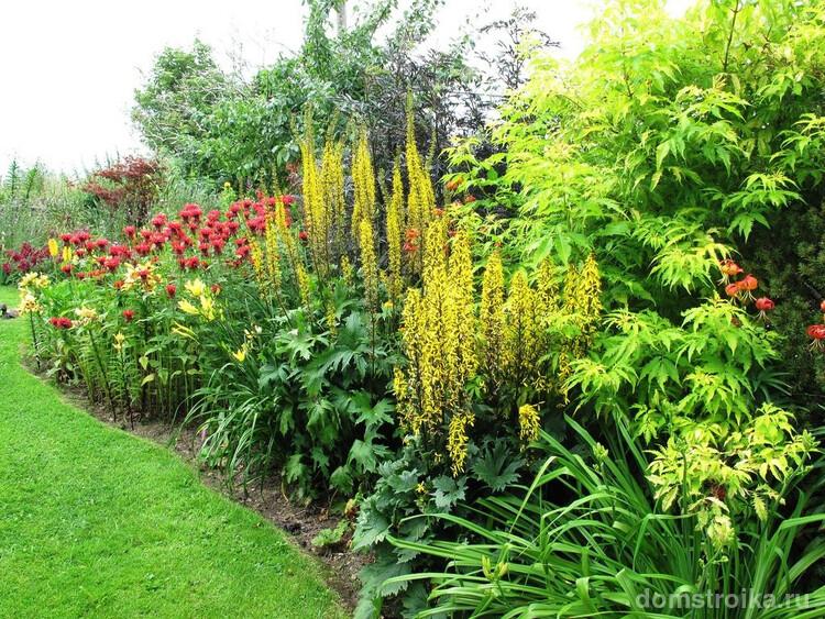 Главные составляющие английского миксбордера – сочетание дикорастущих и садовых растений.